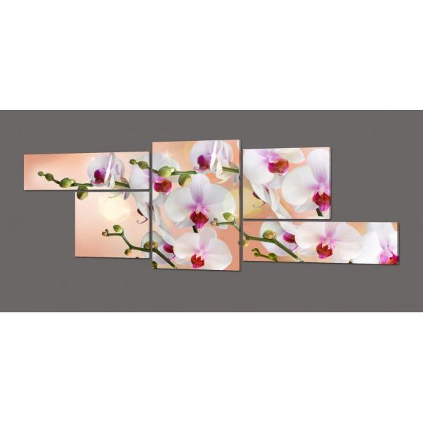 Модульная картина Орхидеи 263*100 см Код: 397.5к.263