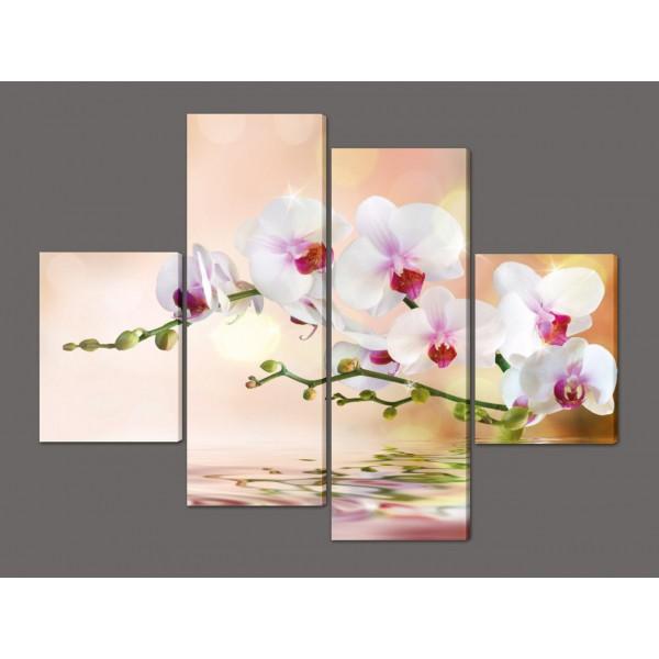 Модульная картина Орхидеи 120*93 см Код: 229.4k.120
