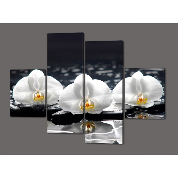 Модульная картина Белые цветки орхидеи 120*93 см Код: 503.4к.120