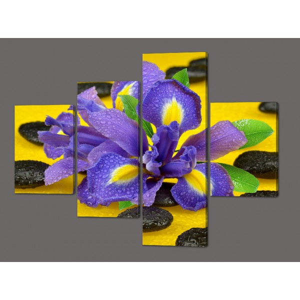 Модульная картина цветы Ирис 120*96,5 см  Код: 551.4к.120