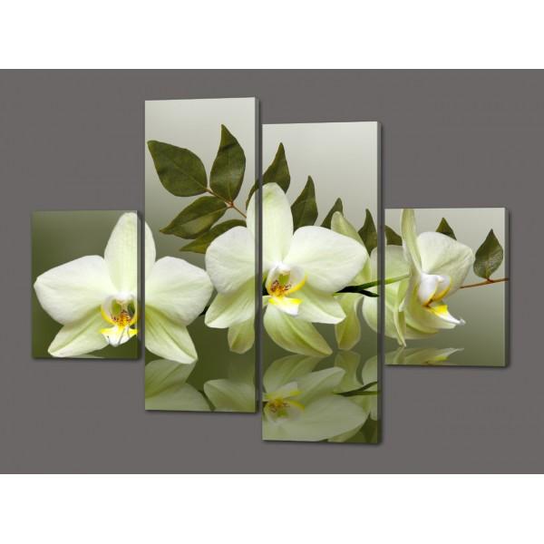 Модульная картина Белые орхидеи 120*93 см  Код: 505.4к.120