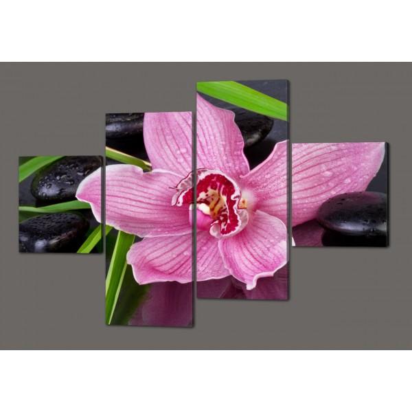 Модульная картина Розовая орхидея на камнях 160*114 см  Код: 508.4к.160