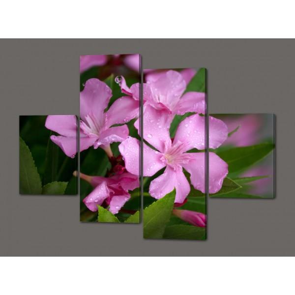 Модульная картина Розовые цветы 120*93 см  Код: 494.4к.120
