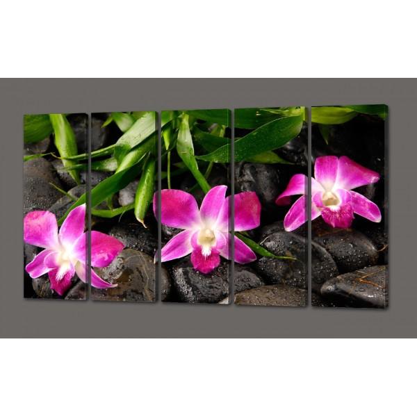 Модульная картина Розовые орхидеи и камни 110*64 см (картина из 5-и частей)Код: 471.5к.110