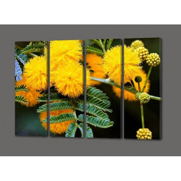 Модульная картина желтые бутоны Мимозы 88*64 см (картина из 4- х частей)Код: 463.4к.88