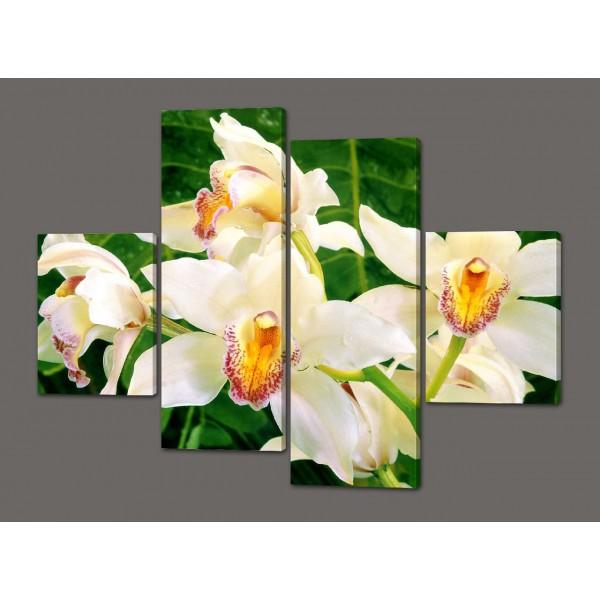 Модульная картина Белые орхидеи 120*93 см  Код: 461.4к.120