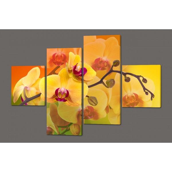 Модульная картина Желтые орхидеи 160*114 см Код: 356.4к.160