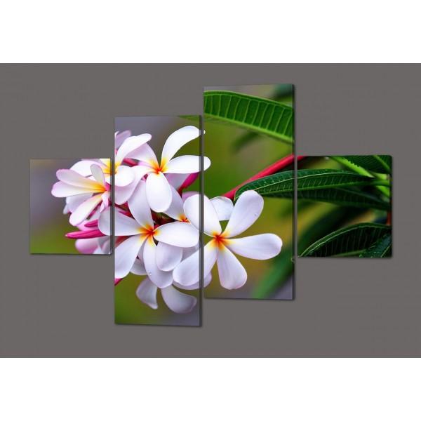 Модульная картина Белые цветы 160*114 см  Код: 404.4к.160