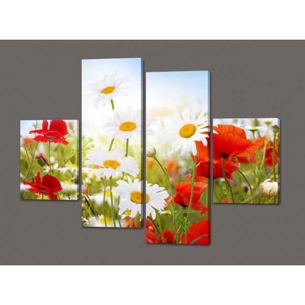 Модульная картина цветы Ромашки и маки 120*93 см  Код: 394.4к.120