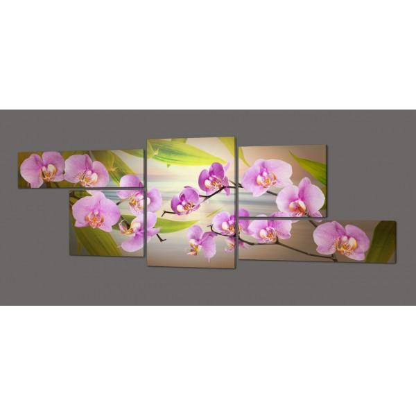 Модульная картина Орхидеи 263*100 см Код: 399.5к.263