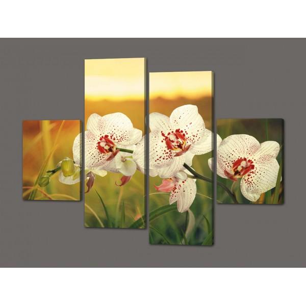 Модульная картина Орхидеи 120*93 см Код: 388.4к.120