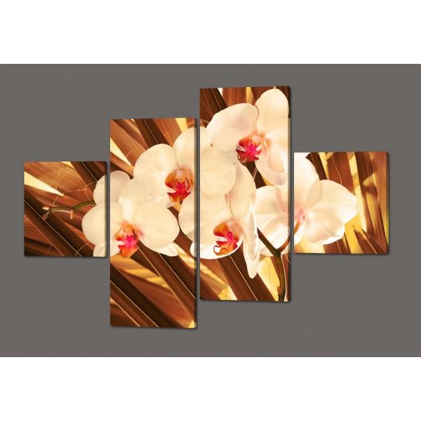 Модульная картина Орхидеи 160*114 см Код: 366.4к.160