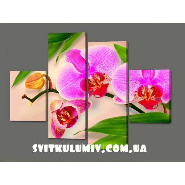 Модульная картина Орхидеи 120*93 см Код: 353.4к.120