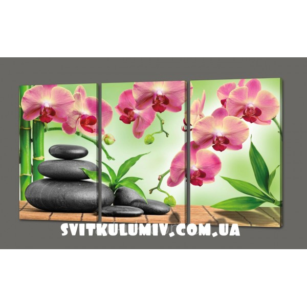 Модульная картина Орхидеи. Камни 120*70 см Код: 329.3к.120