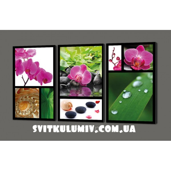Модульная картина на искусственной коже коллаж Орхидеи 120*70 см Код: 274.4k.120