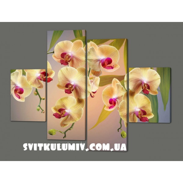 Модульная картина на кожзаме Орхидеи 120*93 см Код: 241.4k.120