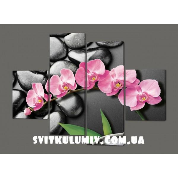 Модульная картина на коже Орхидея на черных камнях 120*93 см Код: 218.4k.120