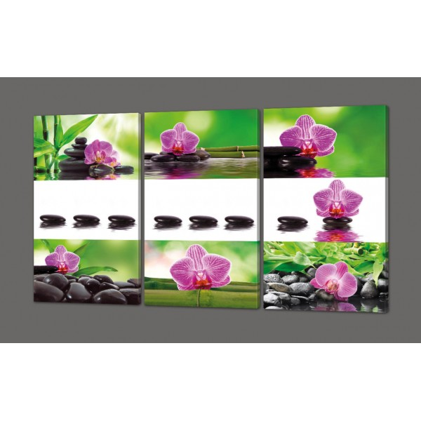 Картина на коже модульная Орхидеи 120*93 см Код: 276.4k.120