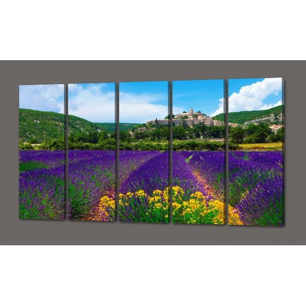 Модульная картина Поле цветов 110*64 см Код: 476.5к.110