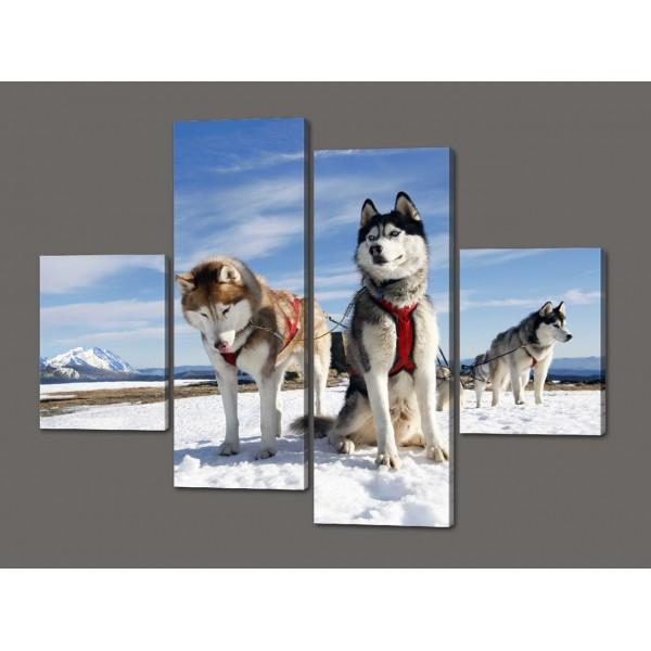 Картина из частей Сибирские хаски 120*93 см Код: 540.4к.120