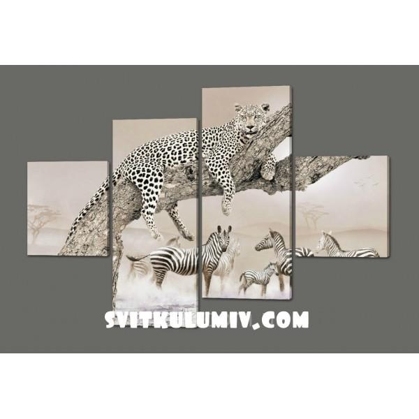 модульная картина Африка. Дикие животные (Леопард и зебры)160*114 см Код: 402.4к.160