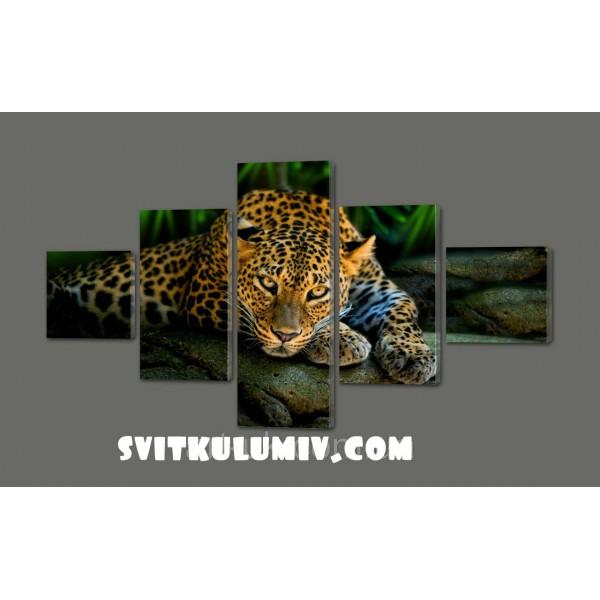 Модульная картина Леопард 110*64 см Код: 299.5к.110