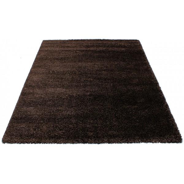 Ковер Supershine -5C R001D brown