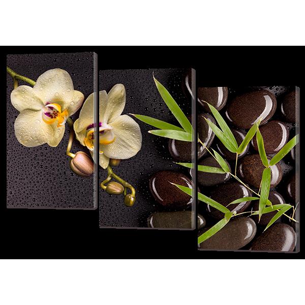 Модульная картина Ветка орхидеи и камни 124* 86 см Код: w6943