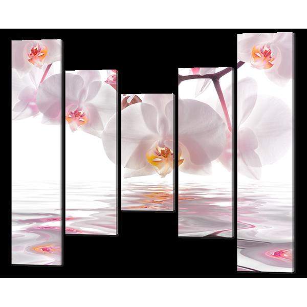 Модульная картина Орхидеи на белом отражение 148* 125 см Код: w6459