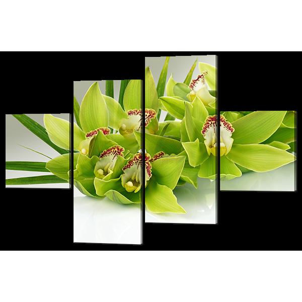 Модульная картина Салатовая орхидея 166* 114 см Код: w6542